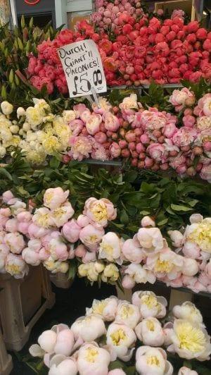 Mercadillo de flores Londres
