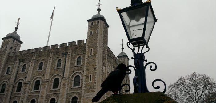 Resultado de imagen de cuervos de la torre de londres
