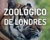 Zoológico de Londres: Información, Entradas y Horarios.