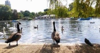 Hyde Park y Kensington Gardens: El parque más famoso de Londres