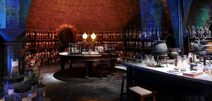 Estudios Harry Potter Pociones
